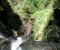 Seixal Inferior | Madeira (PT)