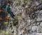Exploración de caminos incas en Machu Picchu | Proyecto Ukhupacha (Perú)