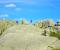 Circular de los Siete Picos | Trail en Guadarrama (ES)