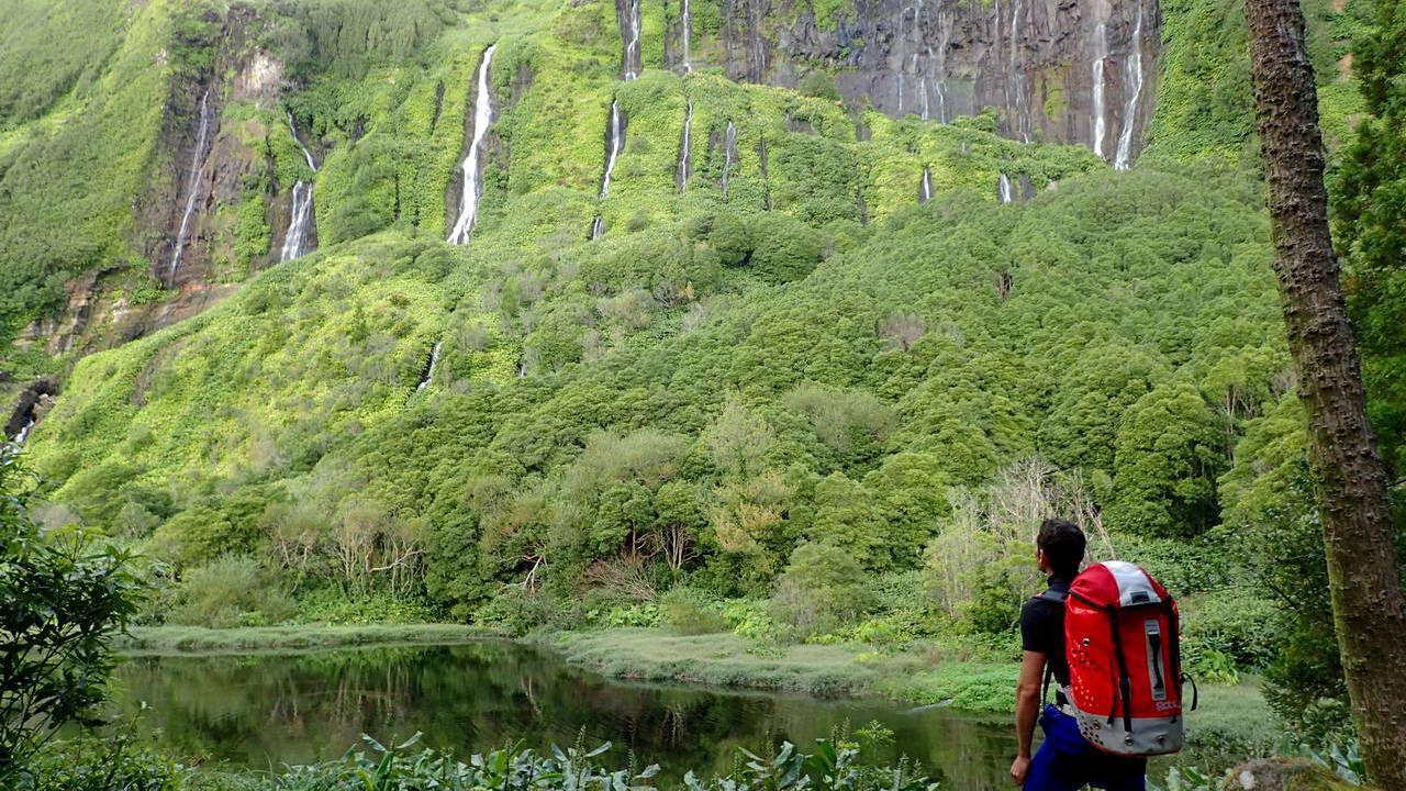 Ferreiro | Barrancos en Flores - Azores (PT)